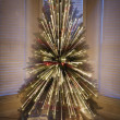 Christmas tree. - Stock Photo