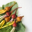Beets with greens. - Stock Photo