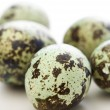 Speckled eggs. — Stock Photo #9553790