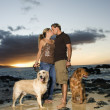 Kissing Couple With Dogs at the Beach - Stock Photo