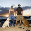 Couple Holding hands and Walking Dogs on the Beach — Stock Photo #9554343