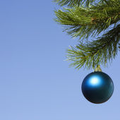 Ornament on tree. — Stock Photo