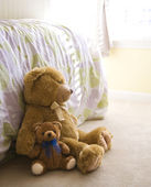 Teddy bears. — Foto Stock