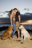 Affectionate Couple With Dogs at the Beach — Stock Photo