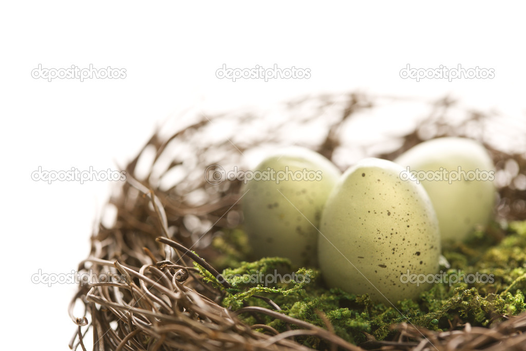 Studio still life of bird's nest with three speckled eggs. — Stock Photo #9553777
