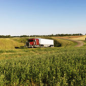 Semi truck on rural road. — Stock Photo