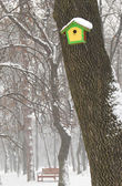 Birdhouse and bench in winter — Stock Photo