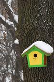 Gelb grün vogelhaus — Stockfoto