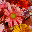 Stock Photo: Gerberas background