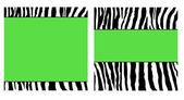 Green Zebra Paper Set — Stock Photo