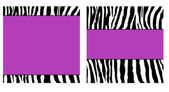 Purple Zebra Paper Set — Stock Photo