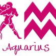 Aquarius Signs - Pink Plastic — Stock Photo