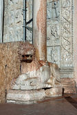 Lion statue in front of Basilica of San Zeno Verona — Stock Photo