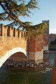 Bridge of Castelvecchio — Stock Photo