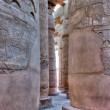 Columns of Karnak temple in hdr — Stock Photo #8838956