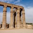 Columns of Luxor temple — Foto Stock