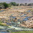 Tsavo River — Foto de Stock