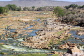 Tsavo River — Foto Stock