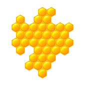 Honeycomb, isolated on the white — Stock Photo