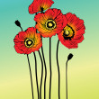 Stock Photo: Vector poppy spring flowers