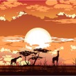 Royalty-Free Stock Immagine Vettoriale: Savannah sunset