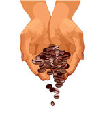 Coffee beans are falling down from two hands — Stock Vector