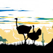 Wild ostriches, horse and vulture, sitting on a rock — Stock Photo