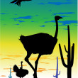 Stock Photo: Ostriches in the steppe and eagle in the sky whit cacti