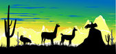 Wild llama and birds on the colorful sky background — Stock Photo