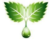 Logo de la hoja — Foto de Stock