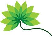Green flower logos — Stock Vector