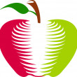 Royalty-Free Stock Vectorielle: Red and green apple