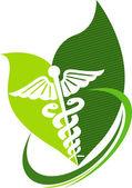 Herbal caduceus — Stock Vector