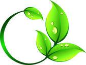 Rotation leaf — Stock Vector