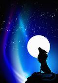 Lonely wolf howling — Zdjęcie stockowe