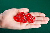 Dices in the hand. — Stock Photo
