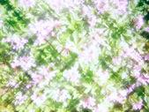 抽象花卉背景 — 图库照片
