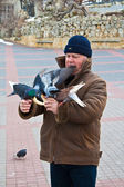 Old man with pigeons. — Stock Photo