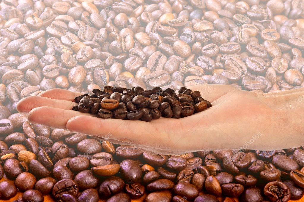 Beans of black arabic coffee in the palm — Stock Photo #9757190