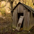 Stock Photo: Old shed in forest