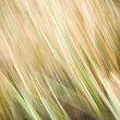 Royalty-Free Stock Photo: Abstract motion-blurred nature-based background