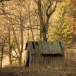 Old shed in the forest — Stock Photo