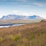 Härligt berg vid havet, fältet gräs, Island — Stockfoto #9283185