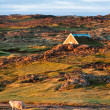 Little house in beautiful mountain scenery, Iceland — Stock Photo