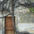 Stock Photo: Vintage door and old crooked tree