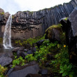 Svartifoss, famous Black waterfall, popular tourist spot in Iceland's Skaftafel national park — Stock Photo