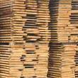 Foto Stock: Wood planks stored outside for further processing or expedition