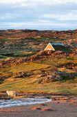 Mały dom w pięknej górskiej scenerii, Islandia — Zdjęcie stockowe