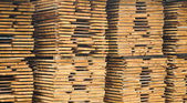Wood planks stored outside for further processing or expedition — Stock Photo