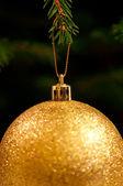 Złotą piłkę bożego narodzenia wiszące na drzewie — Zdjęcie stockowe